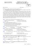 Đề kiểm tra HK 1 môn tiếng Anh lớp 10 năm 2017-2018 - THPT Đồng Đậu - Mã đề 202