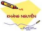 Bài giảng Kháng Nguyên - PhD. Nguyễn Văn Đô