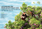 Lựa chọn bảo tồn trước sức ép từ phát triển: Trường hợp Voọc Chà Vá Chân Nâu trên bán đảo Sơn Trà