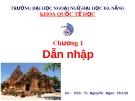 Bài giảng Di tích dẫn nhập: Chương 1 - PGS.TS. Nguyễn Ngọc Chinh