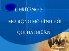 Bài giảng Kinh tế lượng - Chương 3: Mở rộng mô hình hồi qui hai biến (39 tr)