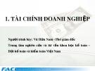 Báo cáo Tài chính doanh nghiệp - Vũ Hữu Nam