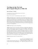 Tác động của đạo Tin Lành đối với người Mông di cư ở Đắk Lắk