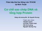 Bài giảng Di truyền thực vật - Nhóm 6: Cơ chế sao chép DNA và tổng hợp Protein
