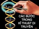 Bài giảng Di truyền thực vật - Nhóm 4: Các bước trong kĩ thuật di truyền