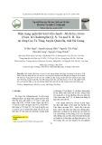 Hiện trạng quần thể loài Giổi chanh - Michelia citrata (Noot. & Chalermglin) Q. N. Vu and N. H. Xia tại rừng Cao Tả Tùng, huyện Quản Bạ, tỉnh Hà Giang