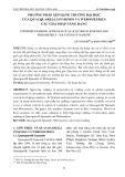Phương pháp xếp hạng trường đại học của Quacquarelli symonds và Webometrics các giải pháp nâng hạng