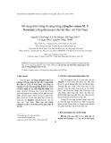 Bổ sung loài Gừng lá sáng bóng (Zingiber nitens M. F. Newman) (Zingiberaceae) cho hệ thực vật Việt Nam