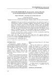 Egg lying behavior of anisopteromalus calandrae, an ectoparasitoid of lasioderma serricorne