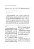 Thông số về tính đa dạng di truyền quần thể tự nhiên loài Đỉnh tùng ở Tây Nguyên, Việt Nam bằng chỉ thị SSR