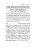 Tối ưu hóa thành phần môi trường tạo khí hydro sinh học của chủng vi khuẩn kị khí Thermoanaerobacterium Aciditolerans Trau Dat phân lập tại Việt Nam bằng phương pháp đáp ứng bề mặt