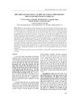 Biểu hiện gen HA5.1 được cải biến mã có hoạt tính sinh học trong nấm men Pichia pastoris X33