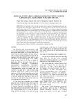 Phân lập, tuyển chọn và định danh một số chủng vi khuẩn liên kết sáu loài hải miên vùng biển Sơn Chà