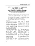 Morphological and molecular characteristics of panax sp. from Phu Xai Lai Leng mountain, Nghe An province, Vietnam