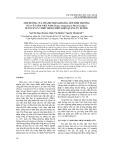 Ảnh hưởng của thành phần khoáng lên sinh trưởng của cây sâm Việt Nam nuôi cấy in vitro trong điều kiện quang tự dưỡng
