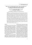 Thiết lập các chỉ tiêu hình thái đặc trưng cho phân loại các giống sắn ở Việt Nam dựa trên mô tả hình thái giống sắn KM 94
