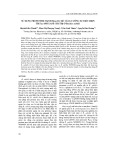 Sử dụng promoter mạnh Pgrac212 để tăng cường sự biểu hiện tiết amylase chỉ thị ở Bacillus subtilis