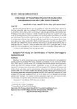 Ứng dụng kỹ thuật Multiplex PCR chẩn đoán Escherichia coli gây tiêu chảy ở người