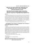 Đánh giá tác dụng kháng virut viêm gan B của các nhóm hoạt chất từ rễ cây nhó đông (Morinda longissima) in vitro