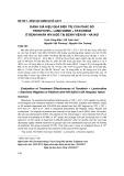 Đánh giá hiệu quả điều trị của phác đồ Tenofovir + Lamivudine + Efavirenz ở bệnh nhân HIV/AIDS tại Bệnh viện 09 - Hà Nội