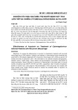 Nghiên cứu hiệu quả điều trị người bệnh sảy thai liên tiếp do nhiễm Cytomegalovirus bằng Acyclovir