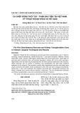 Ca ghép đồng thời tụy - thận đầu tiên tại Việt Nam: kỹ thuật ngoại khoa và kết quả