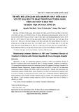 Tìm hiểu mối liên quan giữa marker virut viêm gan B với kết quả điều trị bằng Tenofovir ở bệnh nhân viêm gan virut B mạn tính tại Bệnh viện Đa khoa Đống Đa