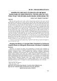 Nghiên cứu hiệu quả vô cảm của gây mê mask thanh quản sử dụng propofol truyền liên tục cho phẫu thuật tán sỏi niệu quản ngược dòng ngoại trú