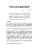 Tìm nghiệm của phương trình Poisson ba chiều bằng hai phương pháp TFQMR và Gmres(m)