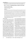 Ảnh hưởng của độ tuổi đến một số tính chất độ bền cơ học của Trúc sào