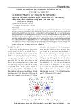 Chiều dài tương quan trong mô hình 2D XY cho hệ vật liệu từ