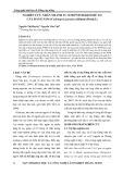 Nghiên cứu nhân nhanh in vitro sinh khối rễ tơ cây đảng sâm (Codonopsis javanica (Blume) Hook.f.)
