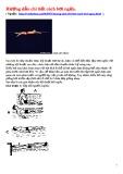 Hướng dẫn chi tiết cách bơi ngửa