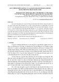 Quy trình nhân giống Cà gai leo (Solanum hainanense) bằng phương pháp giâm cành
