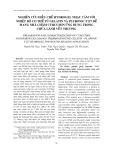 Nghiên cứu điều chế Hydrogel nhạy cảm với nhiệt độ cơ thể từ Gelatin và Pluronic F127 để mang nhả chậm Curcumin ứng dụng trong chữa lành vết thương
