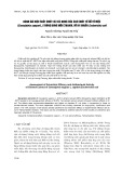 Đánh giá hiệu suất chiết và tác dụng của cao chiết từ gỗ tô mộc (Caesalpinia sappan l.) trong dung môi Ethanol với vi khuẩn Escherichia coli