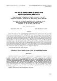 Khai thác vật liệu kích tạo đơn bội tự nhiên UH400 phục vụ chọn tạo giống ngô ưu thế lai