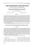 Xử lý chất rối loạn nội tiết bằng hệ thống điện phân sử dụng điện cực Carbon