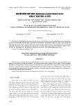 Bảo tồn giống Thuỷ tùng (Glyptostrobus pensilis (staunt) k. koch) bằng kỹ thuật ghép In vitro