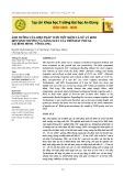 Ảnh hưởng của biện pháp tưới tiết kiệm và xử lý rơm đến sinh trưởng và năng suất lúa trên đất phù sa tại Bình Minh - Vĩnh Long