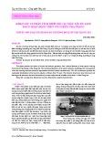 Khảo sát và phân tích thiết kế các mẫu tàu du lịch đang hoạt động trên vùng biển Nha Trang
