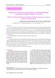 Nghiên cứu bảo quản tinh trùng cá Chẽm mõm nhọn (Psammoperca waigiensis) trong tủ lạnh