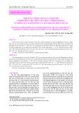 Khảo sát tính chất của enzyme Termamyl 120L trên cơ chất Carrageenan từ rong sụn Kappaphycus alvarezii (DOTY) DOTY