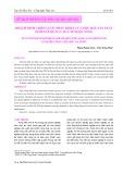 Hoạch định chiến lược phát triển của Nhà máy sản xuất gốm xây dựng cao cấp Ngọc Sáng