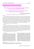 Hiện trạng sản xuất và kinh doanh giống cá rô phi (Oreochromis spp.) tại tỉnh Hải Dương