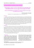 Thành phần giống loài ký sinh trùng ký sinh trên hầu Thái Bình Dương (Crassostrea gigas) nuôi tại Quảng Ninh