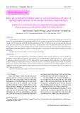 Điều tra tình hình nhiễm virut Laem-Singh bằng kỹ thuật RT-PCR trên tôm sú nuôi (Penaeus Monodon) ở Khánh Hòa