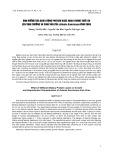 Ảnh hưởng của hàm lượng protein khác nhau trong thức ăn lên sinh trưởng và sinh sản của Artemia franciscana Vĩnh Châu
