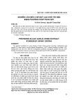 Nghiên cứu điều chế bột cao khô tỏi đen bằng phương pháp phun sấy