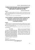 Nghiên cứu đáp ứng điều trị của phác đồ 2SRHZ/6HE giai đoạn tấn công trong lao phổi mới tại Bệnh viện Lao và bệnh Phổi Bắc Ninh
